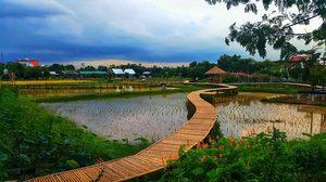 Wisdom Farm โซนใหม่ในพิพิธภัณฑ์การเกษตรฯ จ.ปทุมธานี ฟินกับท้องนาและวิวธรรมชาติ