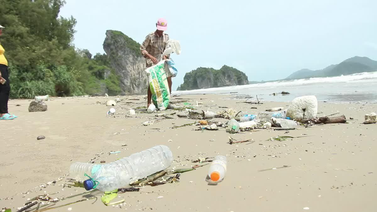 คลื่นลมแรงทำขยะเกลื่อนหาดยาว ประมงพลิกวิกฤตเก็บขวดพลาสติกขาย