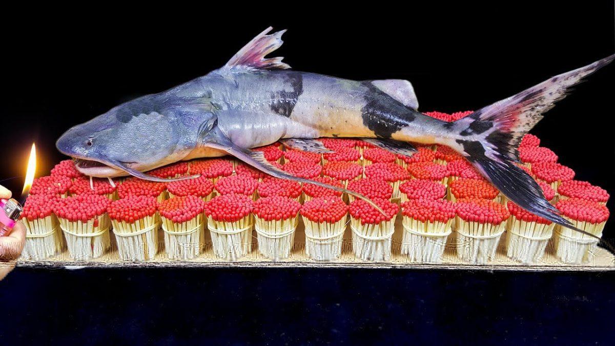 เมื่อ ปลา Monster Fish Vs กองทัพไม้ขีดไฟ ทิ้งไว้ 15 นาที สภาพที่ได้เป็นแบบนี้