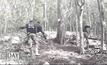 เตรียมบวงสรวงตัดไม้จันทน์หอมป่ากุยบุรี