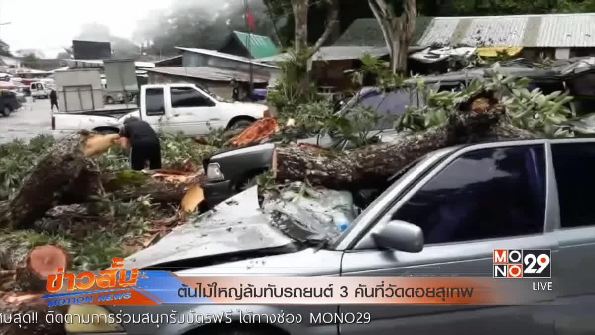 ต้นไม้ใหญ่ล้มทับรถยนต์ 3 คันที่วัดดอยสุเทพ