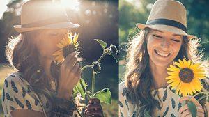ดอกกุหลาบ หลบไปเมื่อคู่รักรู้ความหมายดอกทานตะวัน