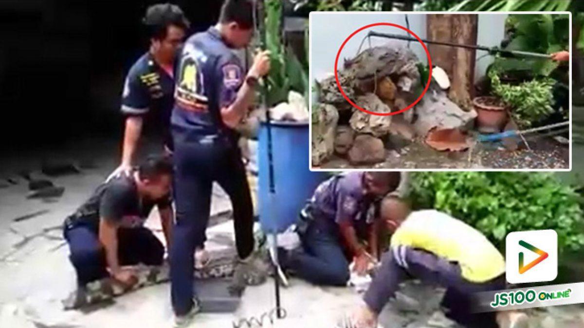 เจ้าหน้าที่กู้ภัยฯ สระบุรี จับจระเข้หลุดออกจากบ่อเลี้ยงภายในบ้าน ใช้เวลากว่าครึ่งชัวโมงถึงจับได้
