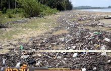 วอนให้ความสำคัญปัญหาขยะพลาสติก ลดการสูญเสียสัตว์ทะเล