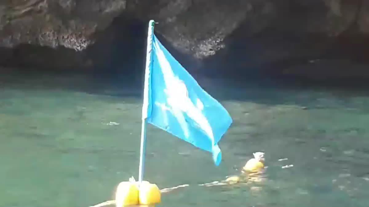 พบซากฉลามครีบดำ อยู่ในกระสอบ ลอยทะเลบริเวณหน้าอ่าวมาหยา