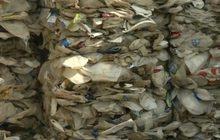 อินโดฯ เล็งเก็บภาษีความหวาน-รถก่อมลพิษ-ถุงพลาสติก