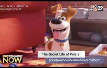 """The Secret Life of Pets 2 อวดเสียงพากษ์ใหม่ของเจ้าหมา """"แม็กซ์"""""""
