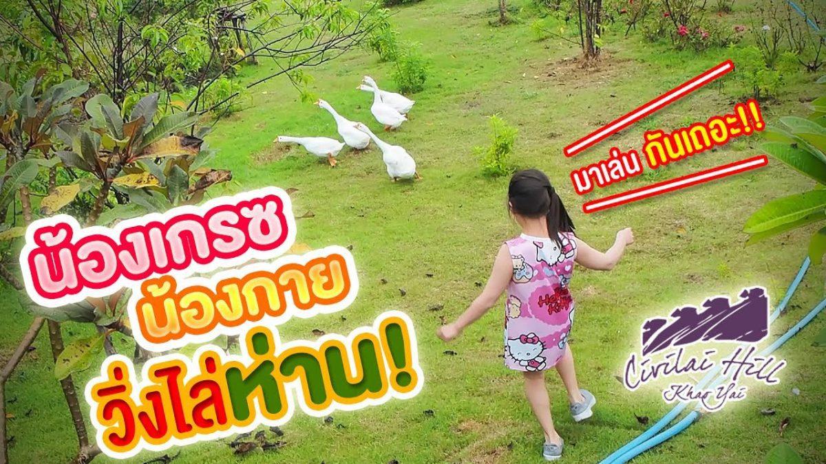 น้องเกรซ น้องกาย วิ่งไล่จับห่านที่ Civilai Hill Khao Yai