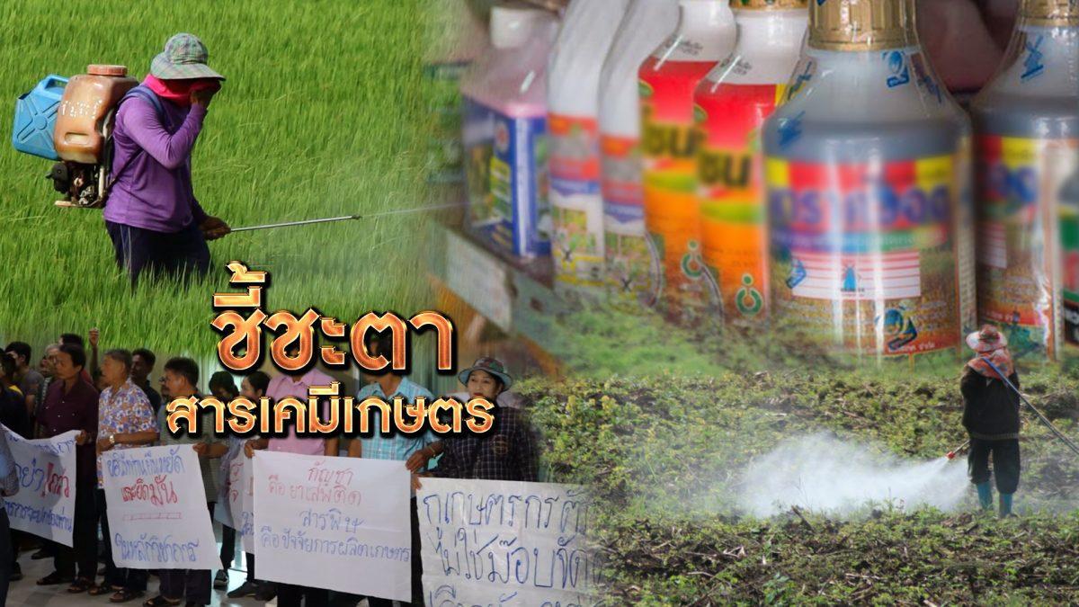 ชี้ชะตาสารเคมีเกษตร 22-10-62