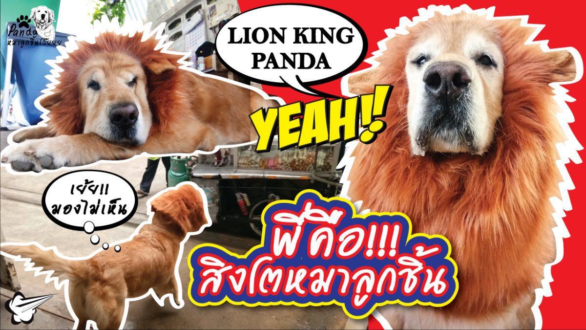 Lion Kong Panda