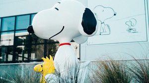 น่ารัก! พิพิธภัณฑ์สนูปี้ (Snoopy Museum Tokyo) แห่งแรกของโลก เมืองโตเกียว ประเทศญี่ปุ่น