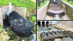 ออสเตรเลียพบแล้ววิธีช่วยน้ำให้พ้นจากมลพิษอย่างง่ายดาย