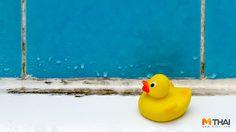 วิธีลดความชื้นในห้องน้ำ ยืดอายุการใช้งานชะลอการเสื่อมโทรม