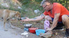 Michael J. Baines หนุ่มหัวใจเพชร ให้อาหารหมาจรจัด ในไทยกว่า 200 ตัวทุกวัน