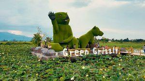 ตลาดน้ำหมียักษ์เขียว (Green Grizzly) จ.เชียงใหม่ ดูหมี ถ่ายรูป กินของอร่อย เพลินทั้งวัน