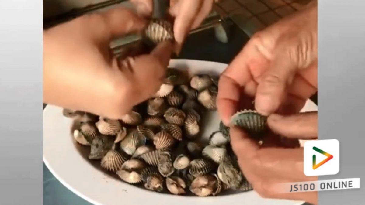 หอยแครงผสมดินน้ำมัน!!! ซื้อระวัง (08-02-61)