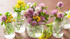 3 วิธีล้างแจกัน ดอกไม้สุดง่ายให้กลับมาใสกิ๊งๆเหมือนใหม่