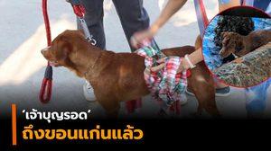 เจ้าบุญรอด ถึงขอนแก่นแล้ว หลังคนเข้าช่วยพบลอยคอกลางทะเลอ่าวไทย