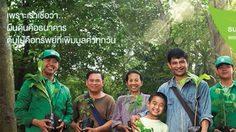 เสนอร่าง พ.ร.บ.ธนาคารต้นไม้ หวังแก้ปัญหาความยากจน สร้างอาชีพ