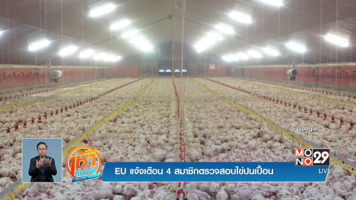 EU แจ้งเตือน 4 สมาชิกตรวจสอบไข่ปนเปื้อน