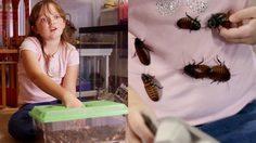 """เห็นแล้วขนลุก!! สาวน้อยอเมริกันปลื้มการเลี้ยง """"แมลงสาบ"""" มีนับพันตัว"""