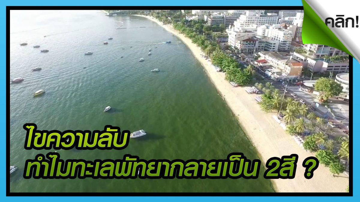 (คลิปเด็ดทั่วไทย) ไขความลับปรากฎการณ์แพลงก์ตอนบลูมหาดพัทยา ทะเล 2 สี นักท่องเที่ยวตื่นตระหนก!