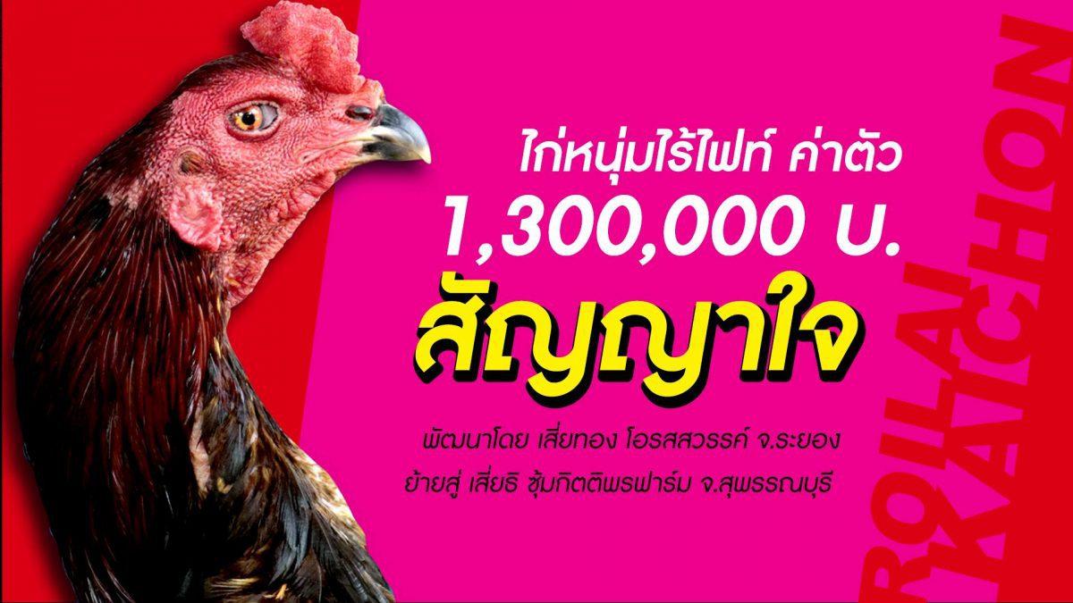หาคู่ชน 10 ล้าน เจ้าสัญญาใจ โอรสสวรรค์ ไม่มีไฟท์ ค่าตัว 1,300,000 บ. สู่ กิตติพรฟาร์ม
