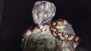 ดูอีกครั้ง! งูเหลือมเลื้อยพันรูปปั้น เสด็จเตี่ย สัญญาณเตือนก่อนเกิดพายุเกย์