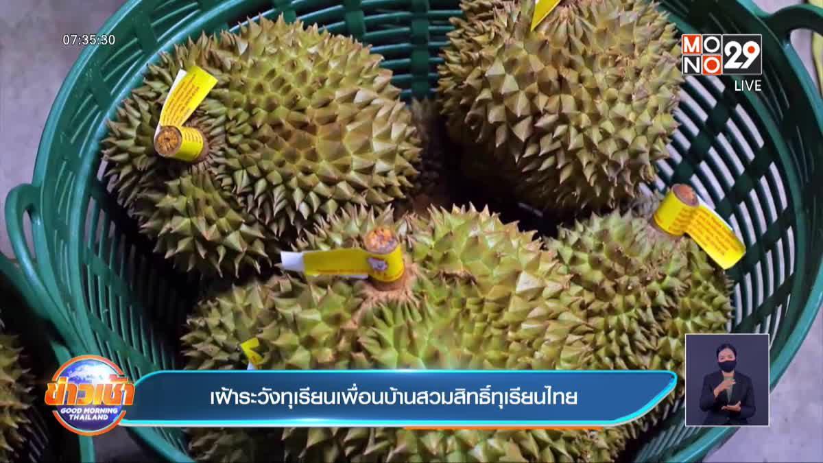 เฝ้าระวังทุเรียนเพื่อนบ้านสวมสิทธิ์ทุเรียนไทย