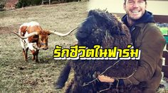 พระเอกสายฟาร์ม! คริส แพรตต์ ดี๊ด๊า รับน้องวัวตัวใหม่มาดูแล!