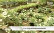 กทม.เปิดศูนย์เรียนรู้เกษตรอินทรีย์
