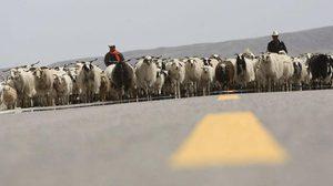 เกษตรกร-คนเลี้ยงสัตว์ในทิเบตรายได้เฉลี่ยต่อหัวเพิ่มแตะ 34,655 บาท