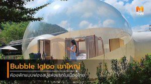 ไปนอนนับดาวฟินๆ ที่ Bubble Igloo เขาใหญ่ ห้องพักฟองสบู่ แห่งแรกในไทย