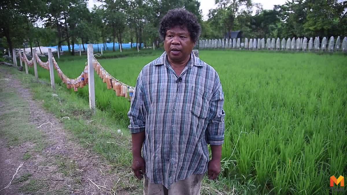 อดีตอาจารย์ปัดเงินกว่าพันล้าน สานฝันทำสวนเกษตรกลางกรุงฯ