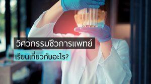 เรียนเกี่ยวกับอะไร? วิศวกรรมชีวการแพทย์