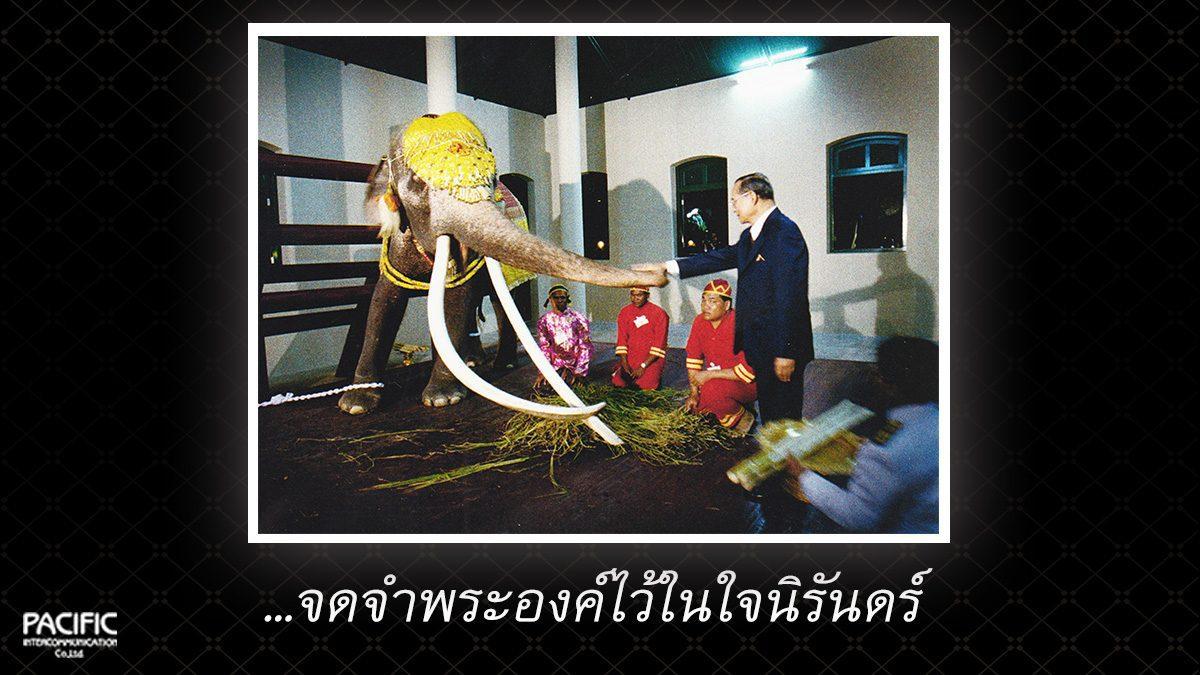13 วัน ก่อนการกราบลา - บันทึกไทยบันทึกพระชนมชีพ