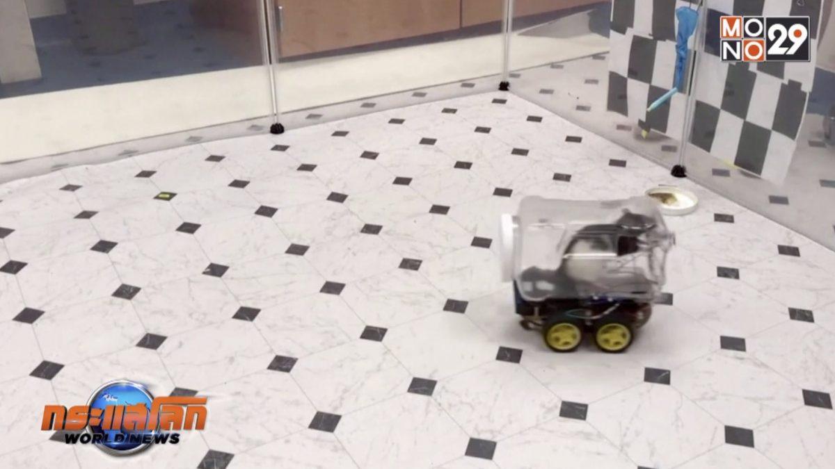 นักวิทยาศาสตร์ฝึกหนูทดลองขับรถ