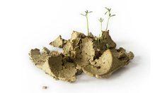 ไบโอแพ็คบรรจุภัณฑ์หีบห่อไข่ใช้แล้วลงดิน ปลูกถั่ว ได้เลย