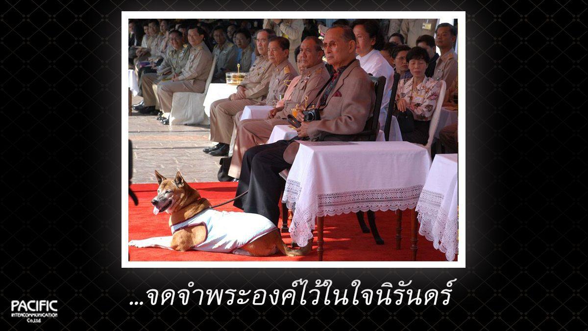 9 วัน ก่อนการกราบลา - บันทึกไทยบันทึกพระชนมชีพ