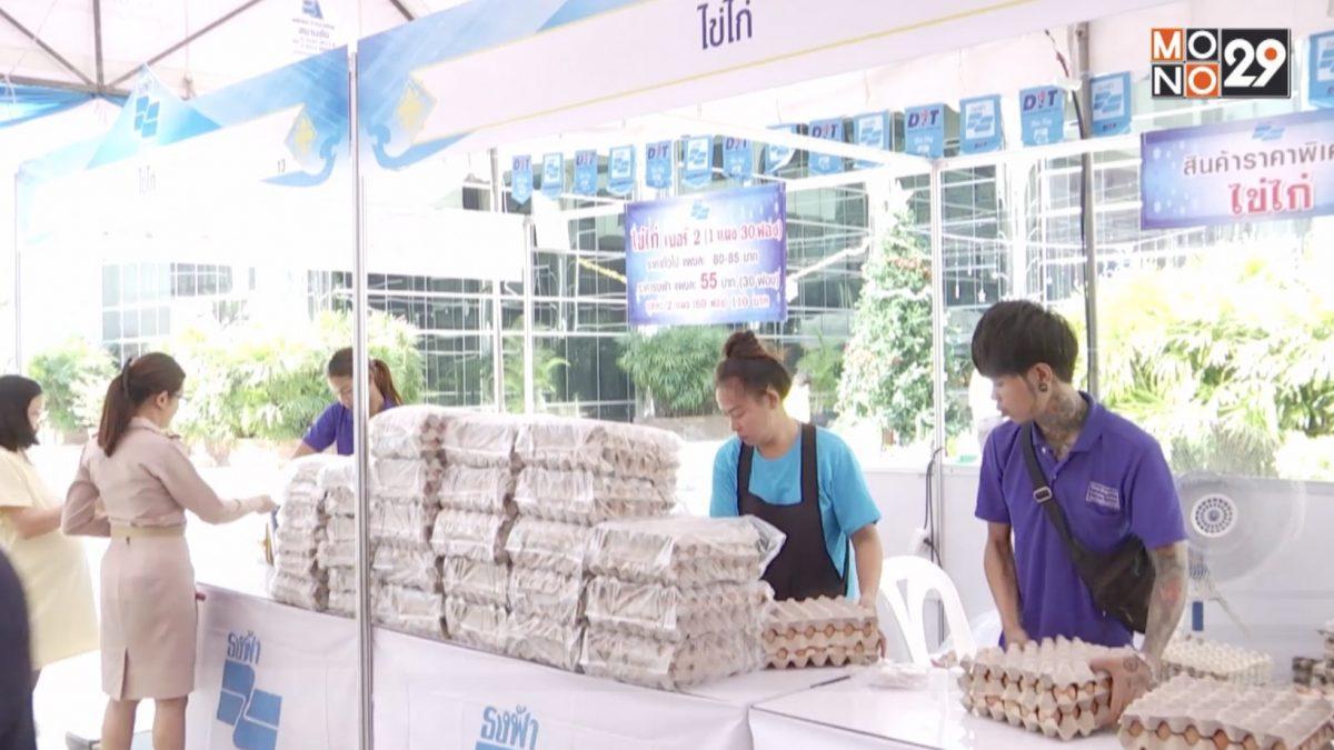เร่งแก้ไข่ไก่ล้นตลาดวันละ 3 ล้านฟอง