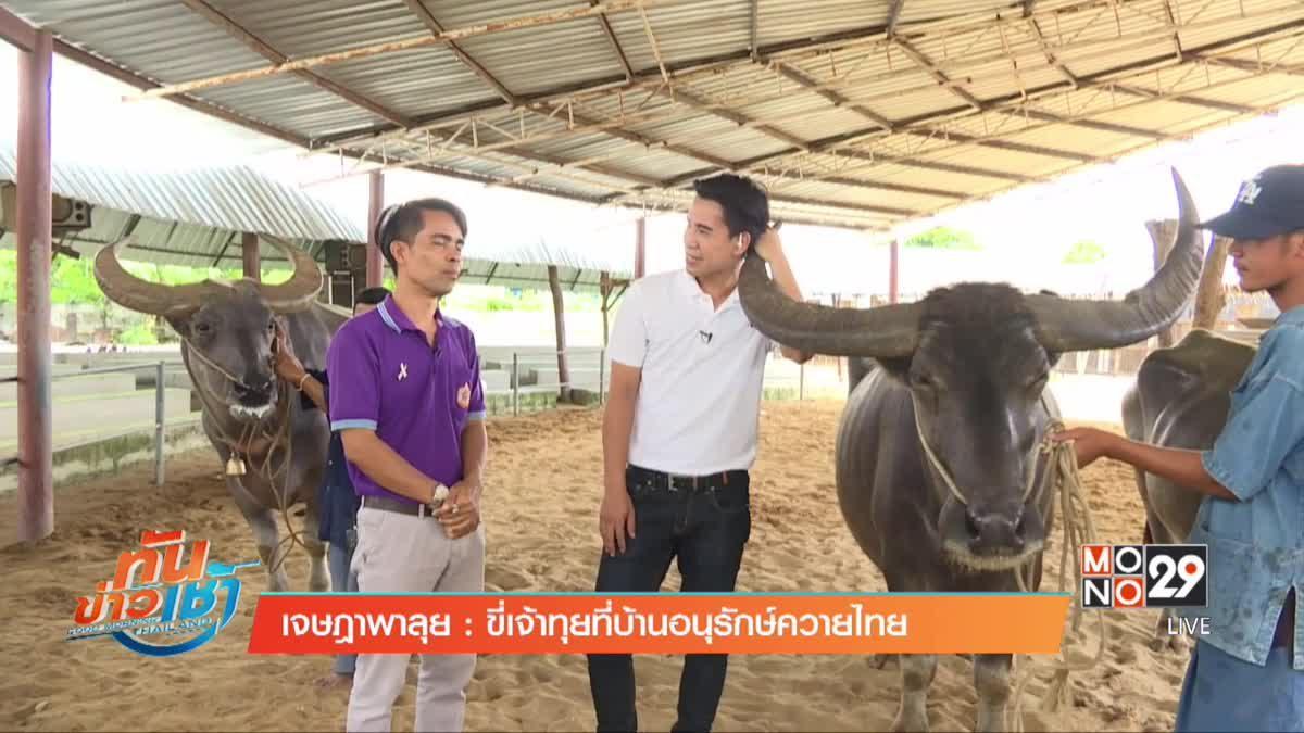 เจษฎาพาลุย : ขี่เจ้าทุยที่บ้านอนุรักษ์ควายไทย
