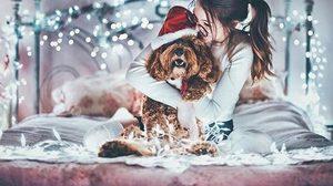 เมื่อสัตว์เลี้ยงแสนรัก ขอมีส่วนร่วมกับงานคริสต์มาส ความน่ารักจึงบังเกิด