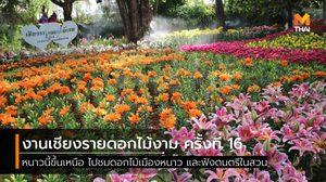 หนาวนี้ไปเที่ยว งานเชียงรายดอกไม้งาม ครั้งที่ 16 และดนตรีในสวน