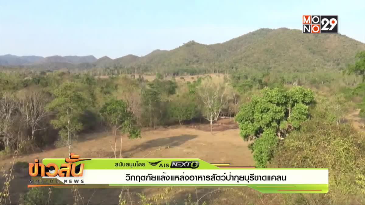 วิกฤตภัยแล้งแหล่งอาหารสัตว์ป่ากุยบุรีขาดแคลน