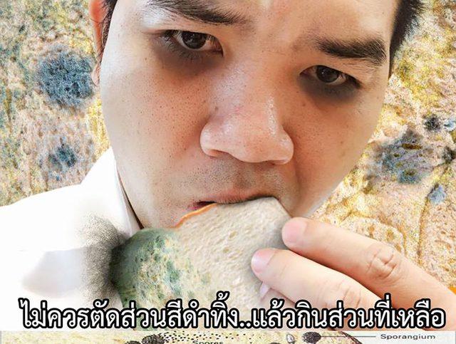 เตือน!! ขนมปังขึ้นรา อย่าฉีกจุดดำทิ้งแล้วกินต่อ