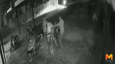 ตำรวจออกหมายจับเพิ่มอีก 6 คน แก๊งทวงหนี้รุมฆ่าเจ้าของหอพัก