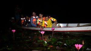 เที่ยวพัทลุง ล่องเรือชมบัว เย้ยจันทร์ คืนวันเพ็ญ ที่ทะเลน้อย