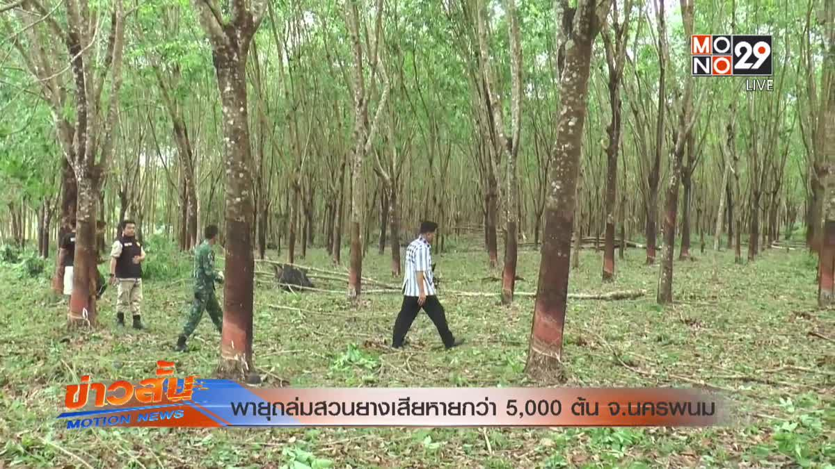 พายุถล่มสวนยางเสียหายกว่า 5,000 ต้น จ.นครพนม