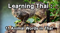 Learning Thai : Animal Words