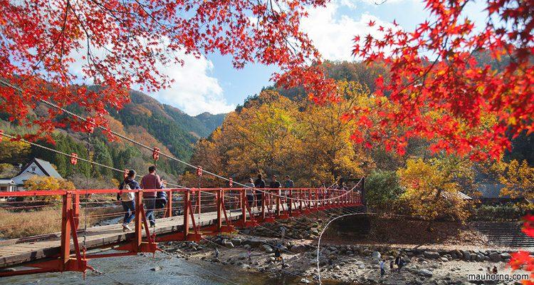Korankei สถานที่ ชมใบไม้เปลี่ยนสีที่ญี่ปุ่น
